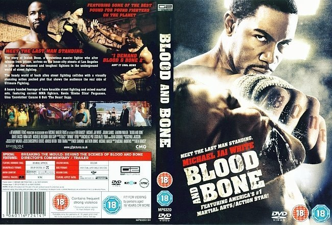 dvd cover Blood And Bone (2009) R2