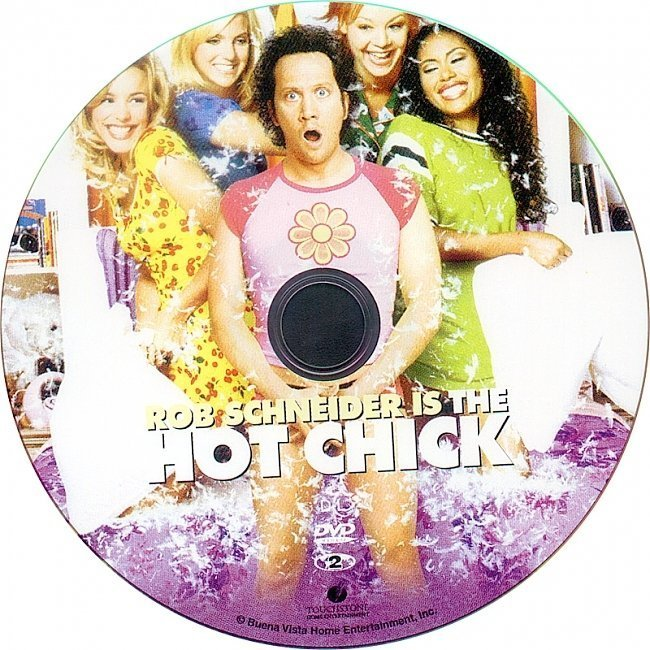dvd cover The Hot Chick (2002) R1