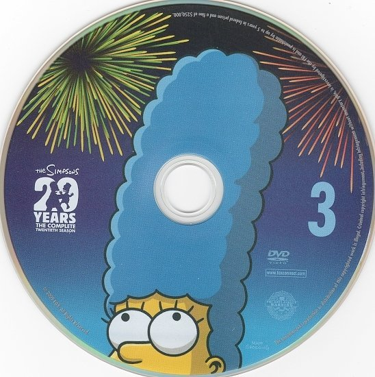 dvd cover The Simpsons: Season 20