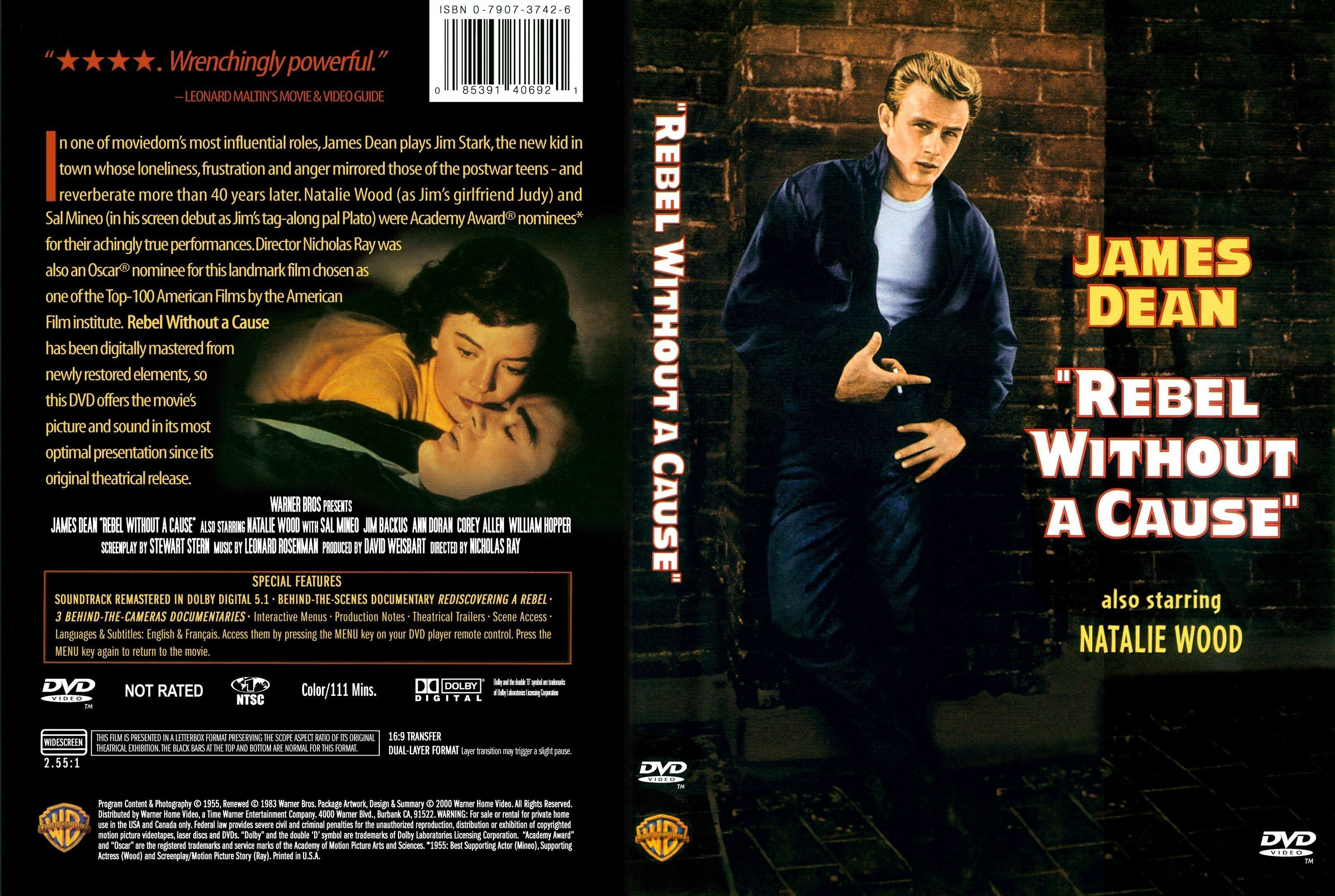 rebel without a cause essays 1950s movie essay: rebel without a cause introduction rebel without a cause is a very popular film from 1955 it depicts life in the 1950's from the viewpoint of three.