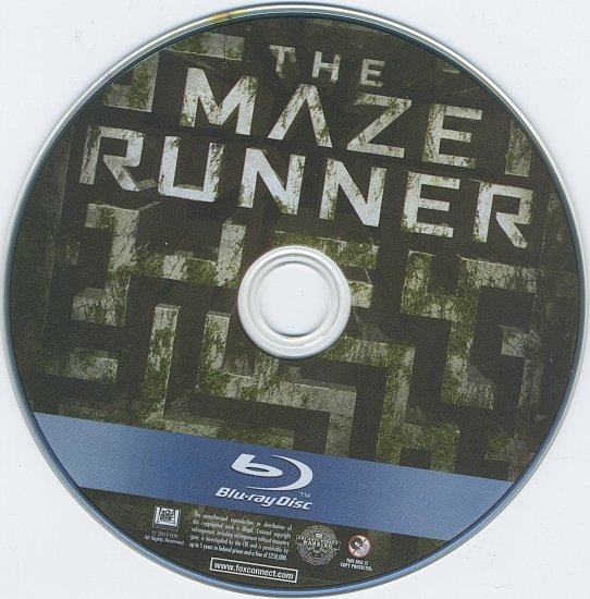 dvd cover The Maze Runner Blu-Ray