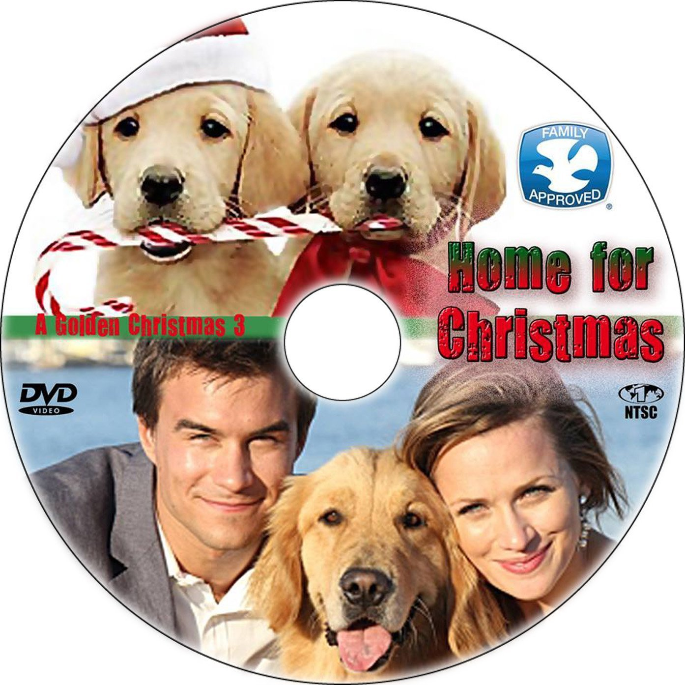 dvd cover home for christmas a golden christmas 3 r1 custom dvd label - Golden Christmas 3
