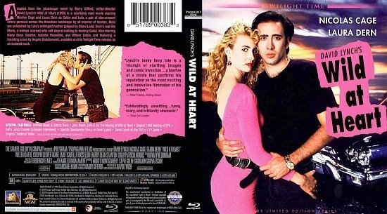 dvd cover Wild At Heart
