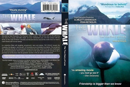 dvd cover The Whale