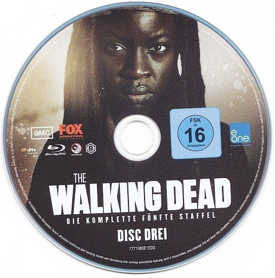 dvd cover The Walking Dead - Season 5 R2 Blu-Ray German