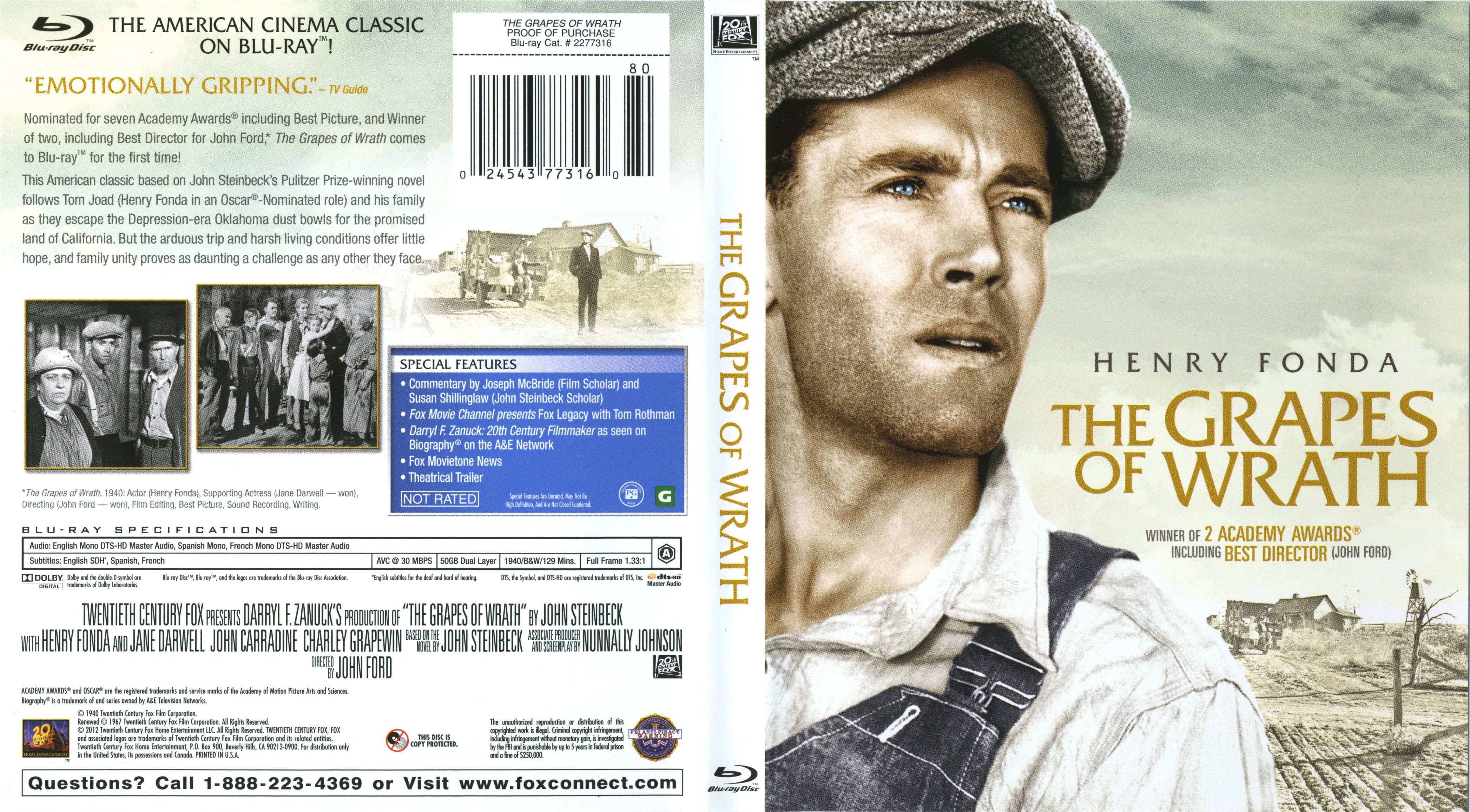 a portrayal of social realism in the grapes of wrath by john steinbeck