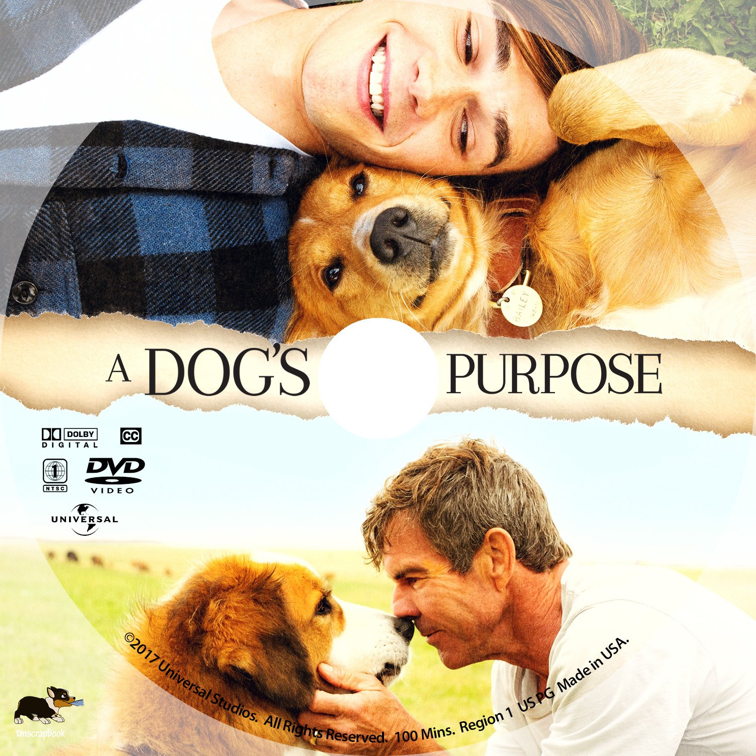 Dog S Purpose Movie Free