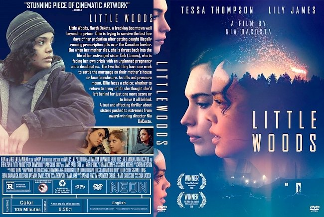 dvd cover Little Woods DVD Cover